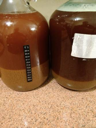 Red ale with two yeasts